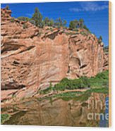 Red Rock Formation In The Kaibab Plateau In Grand Canyon National Park Wood Print
