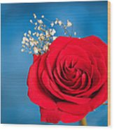 Red Rose And Baby Breath Wood Print