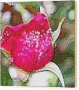 Red Rose Bud Wood Print