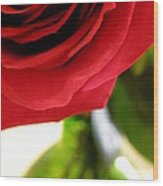 Red Rose In Glass Vase Wood Print