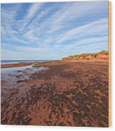 Red Sands Low Tide Wood Print