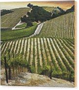 Red Soles Vineyard Wood Print