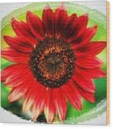 Red Sun Flower Wood Print