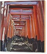 Red Torii Arches Over Steps At Inari Wood Print