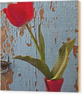 Red Tulip Bending Wood Print