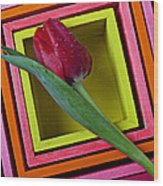 Red Tulip In Box Wood Print