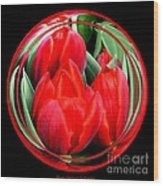 Red Tulips Under Glass Wood Print