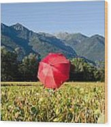 Red Umbrella On The Field Wood Print