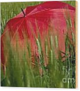 Red Umbrella On The Wheat Field Wood Print