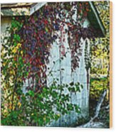 Red Vine Shed Wood Print