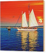 Red White Blue Cape Cod Will Do Wood Print