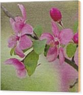 Redbud Branch Wood Print