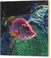Redfish Wood Print