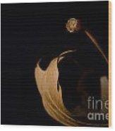 Redleaf Wood Print