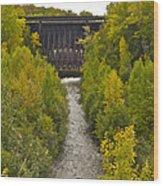 Redridge Steel Dam 7844 Wood Print by Michael Peychich