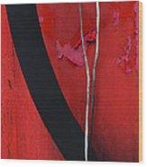 Redrum Wood Print by Skip Hunt