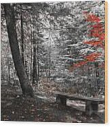 Reds In The Woods Wood Print