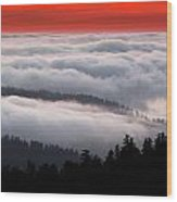 Redwood Clouds Wood Print
