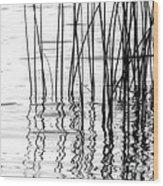 Reeds On The Turtle Flambeau Flowage Wood Print