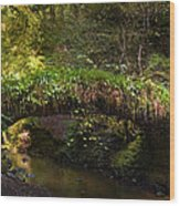 Reelig Bridge And Grotto Wood Print