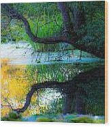 Reflected Tree In Pastel Landscape Wood Print
