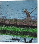 Reflecting On Rice Wood Print