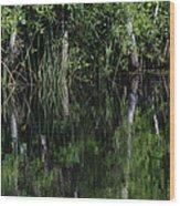 Reflecting Pool  Wood Print