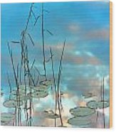 Reflection - Reeds And Pond Lilies Wood Print