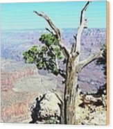 Reflection In The Canyon Wood Print