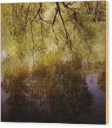 Reflection Wood Print by Joana Kruse