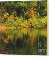 Reflection Of Autumn Colors Wood Print