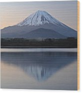 Reflection Of Symmetry Wood Print