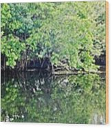 Reflection On The North Fork River Wood Print