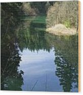 Reflection Pond Wood Print