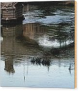 Reflection Tevere Wood Print