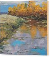 Reflections Wood Print by Graham Gercken