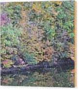 Reflections Of A Tapestry 2 Wood Print