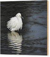 Reflections Of An Egret  Wood Print