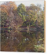 Reflections Of Autumn Wood Print by Rod Johnson