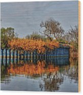 Reflections On Blue Wood Print