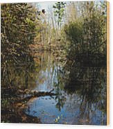 Reflective River Thoughts Wood Print
