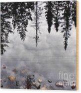 Reflective Wetlands Wood Print