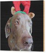 Reindeer Doggie Wood Print