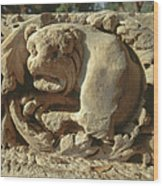 relief of Lion at Tel Beit She'an Wood Print