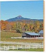 Remick Farm Autumn Wood Print