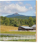 Remick Farm Summer Wood Print