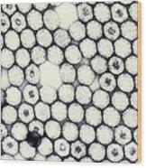 Reovirus Wood Print by Science Source