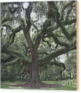 Resurrection Oak Wood Print