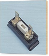 Rewirable Electrical Fuse Wood Print by Sheila Terry