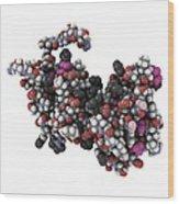 Rgs Domain Molecule Wood Print